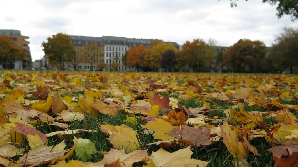 Alaunplatz im Herbst